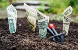 improve finances and life