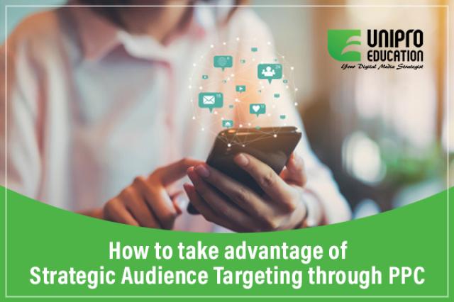 strategic audience targeting through ppc